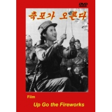 DVD Up Go the Fireworks - 축포가 오른다